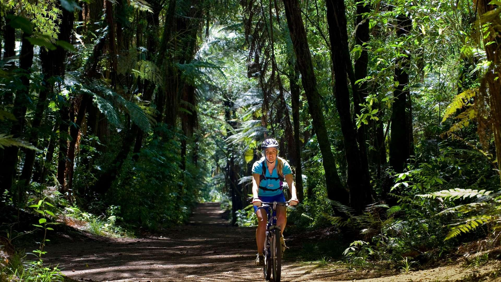 Te Ara Ahi Cycle Trail | Thermal Land Shuttle