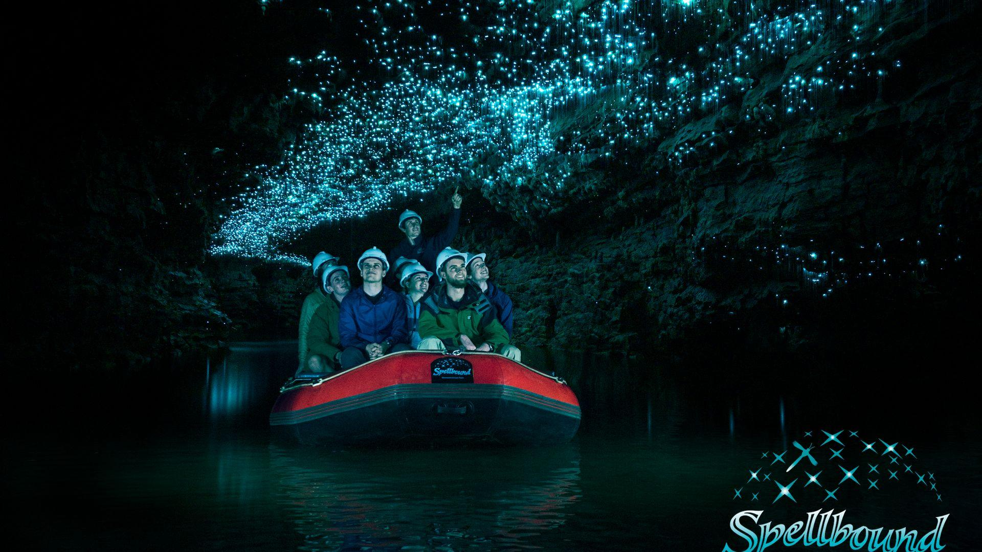 Glowworm Cave Tour | Thermal Land Shuttle