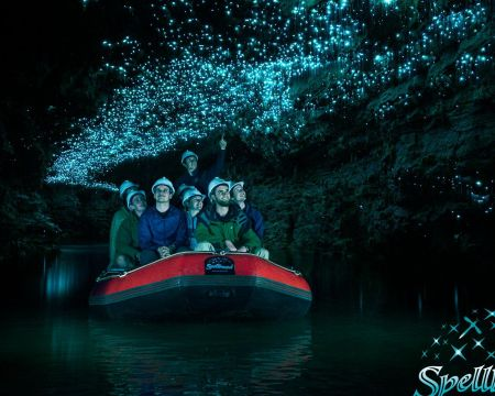 Glow-worm and Cave Tour Full Day Tour | Thermal Land Shuttle